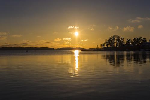 canon6d landscape nature outdoors outside sun golden sunset water sea espoo finland