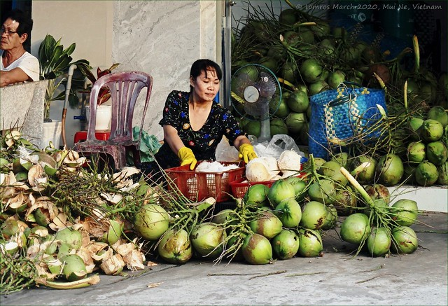 Coconut lady. Mui Ne, Vietnam