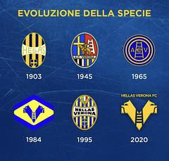 Hellas Verona, l'evoluzione del logo   Hellas Live