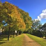 Scenic Avenham Walkway