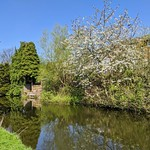 Spring down by the canal