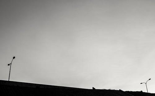landscape silhouette sunset twilight nairobi kenya