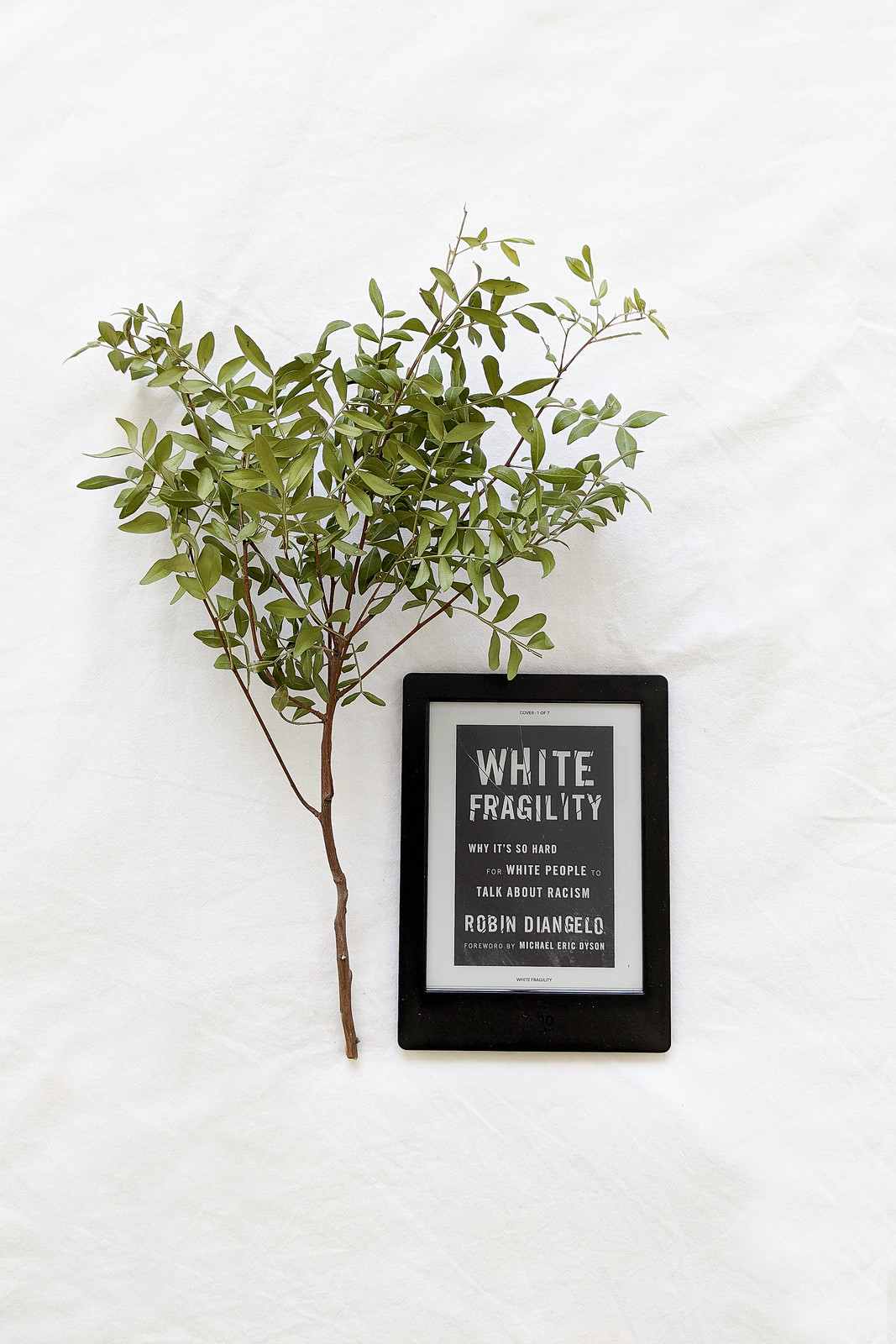 An Anti-Racist Reading List