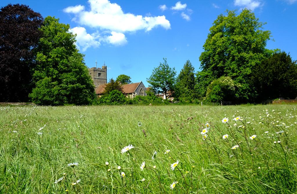 Meadows @ Lenham Kent