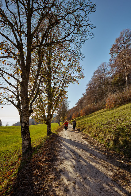 Weissentein mountain – A walk on a sunny day