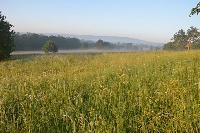 Lock-Down Mist