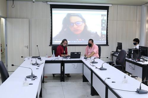 Audiência pública para debater o enfrentamento à violência contra mulheres no contexto da pandemia da Covid-19 - 9ª Reunião Ordinária - Comissão de Mulheres