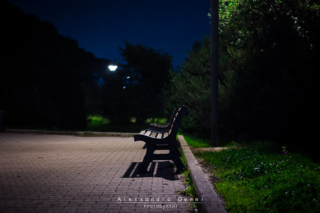 Bench of lonelines