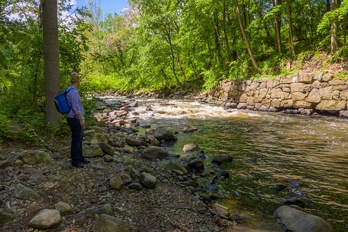 smack53 boonton newjersey rockawayriver river stream brrok water rocks trees spring springtime nikon z50 nikonz50