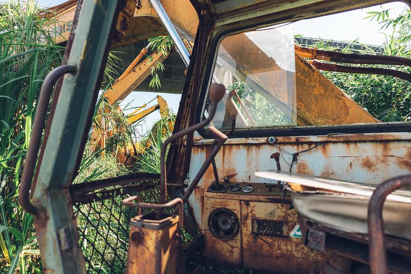 山貓樂園|Ruins