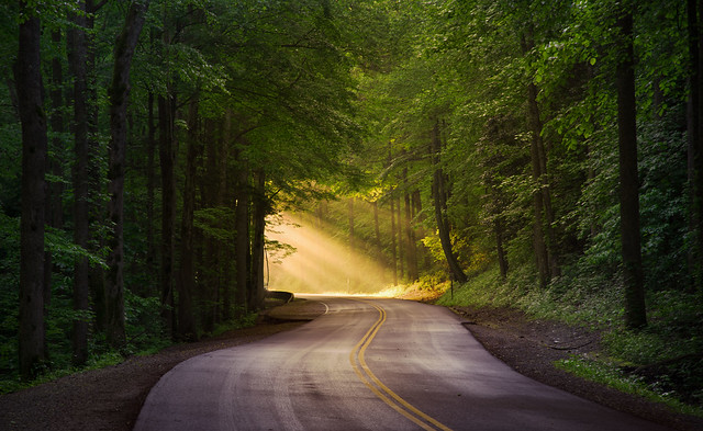 Smoky Mountain Road in the Morning