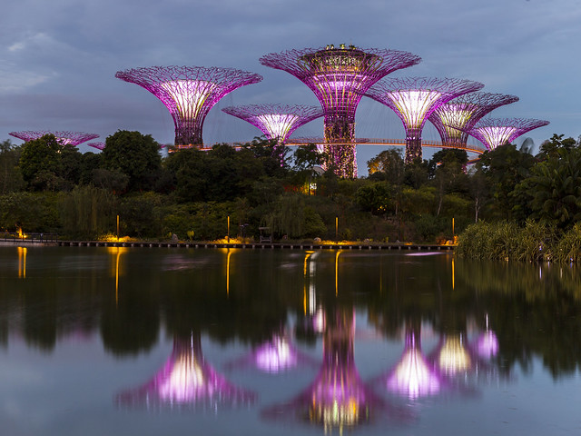 Gardens by the Bay Super-tree Reflections [In Explore 3Jun2020]