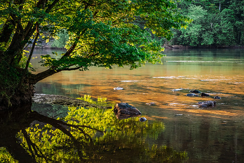 reflection relax serene landscape scenic nature green river