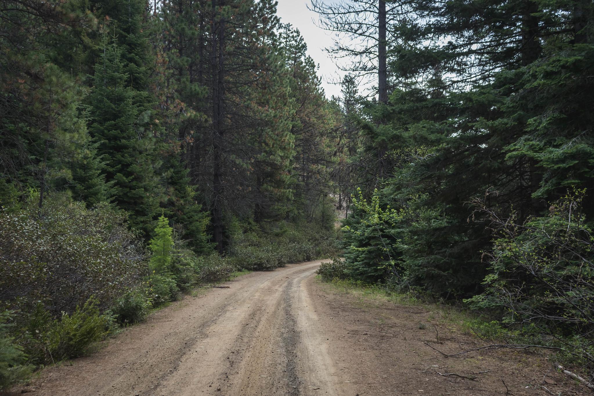 Road 9714