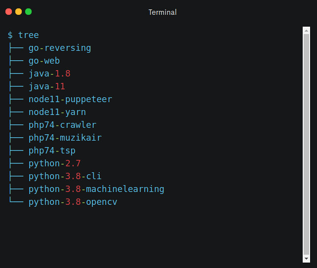 Programming in Container - Dir
