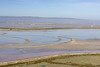 Don Edwards San Francisco Bay National Wildlife Refuge-5472