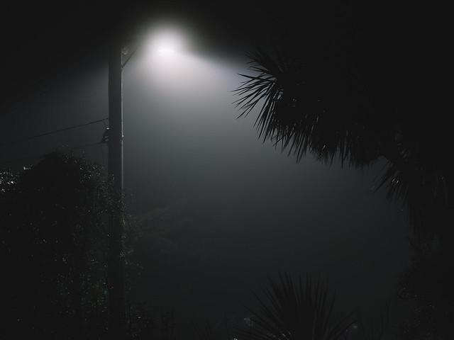 Huntsbury Noir