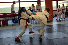 My little daughter with the blue belt in action