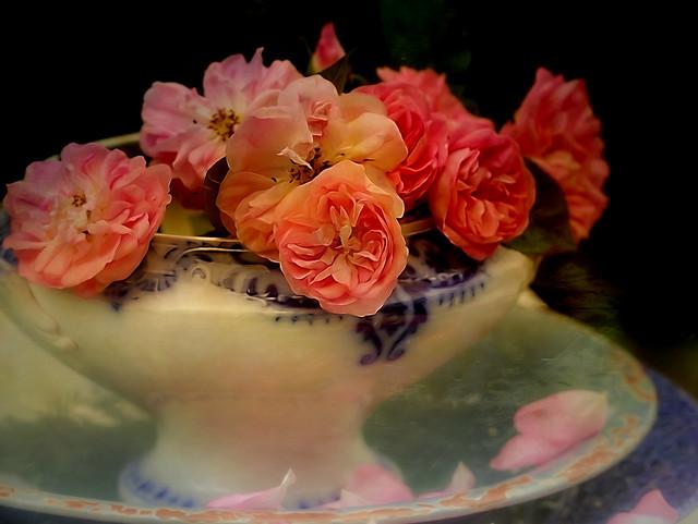 Roses in Grandma´s tureen.