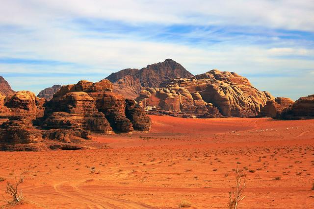 Close Up Desert