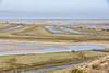 Don Edwards San Francisco Bay National Wildlife Refuge-5470