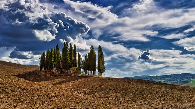 Cipressi di San Quirico d'Orcia (2) / Cypresses of San Quirico d'Orcia (2)