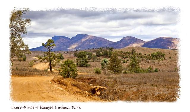 Day 64: Get away to Ikara-Flinders Ranges National Park