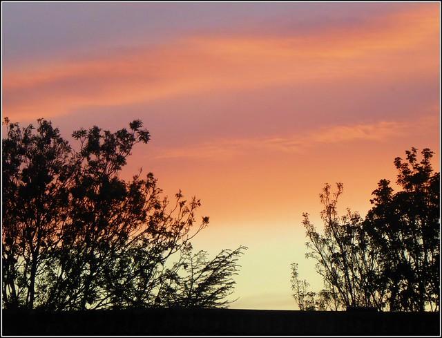 Summer Sunset ..