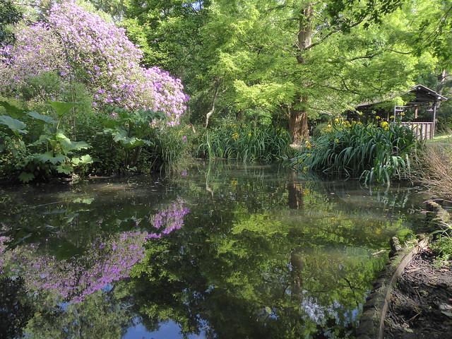 Japanese Garden, Peckham Rye Park, SE London
