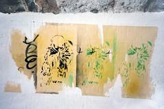 stencilled graffiti posters in Oaxaca, Mexico