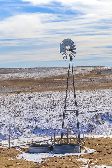 Windmill Pumping Water for Cattle on the Range