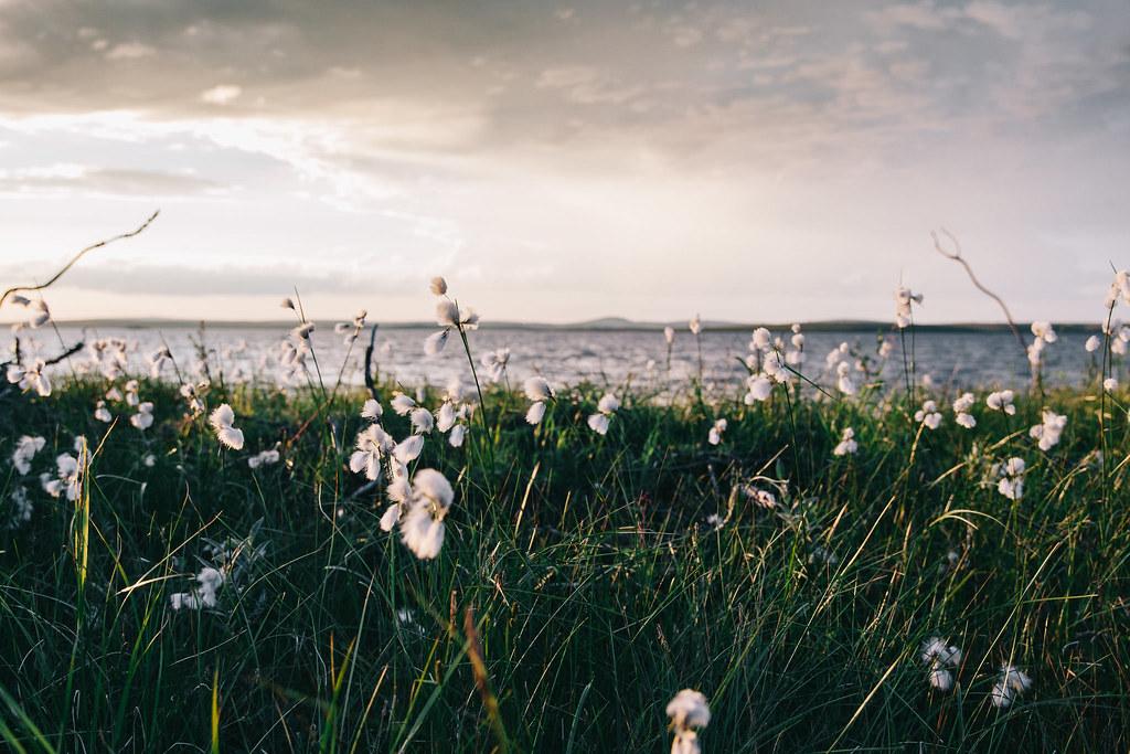 © MARINELLA HIMARI | Pöyrisjärvi