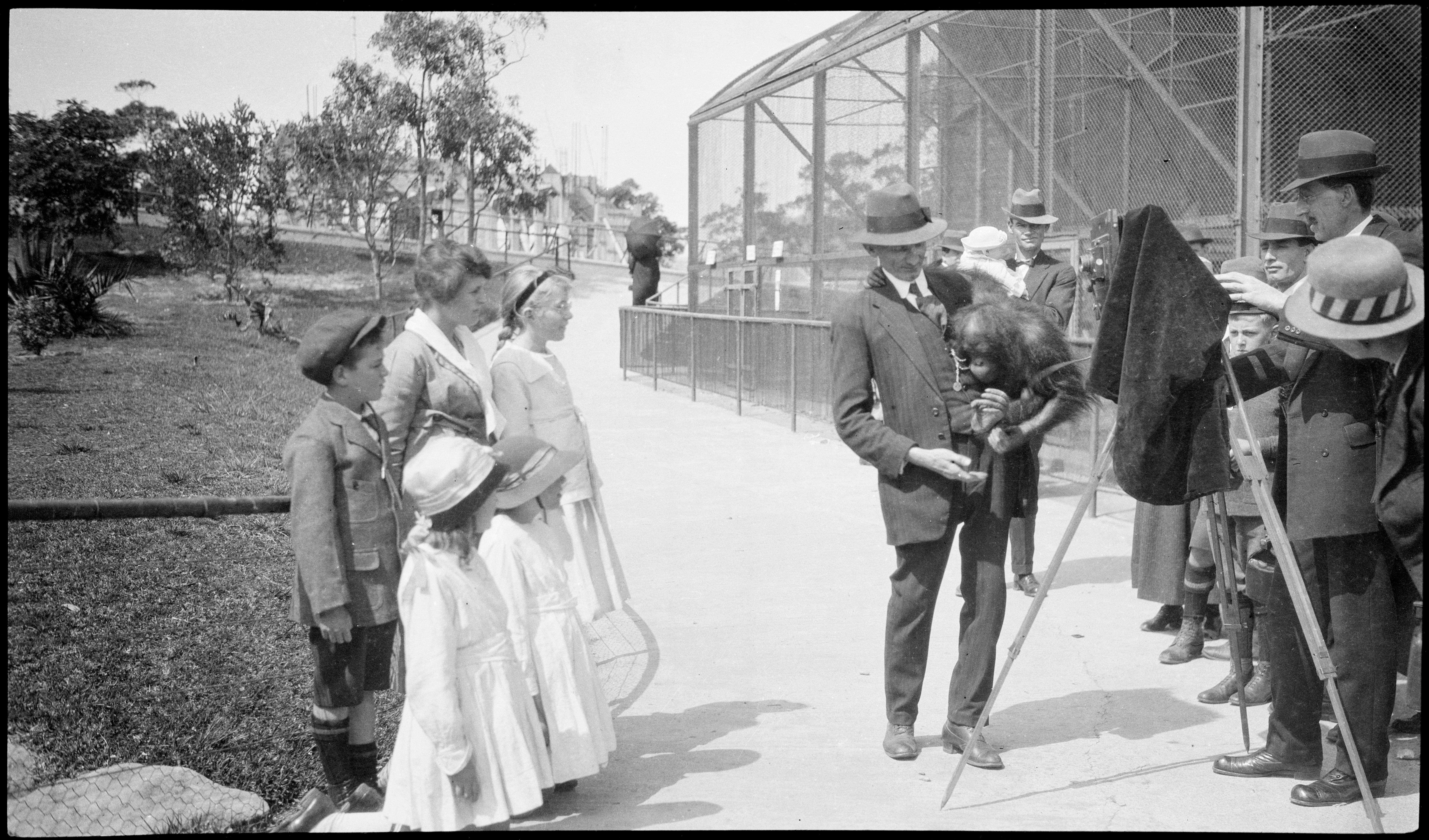 Camera man with orang-outang, Taronga Zoo 1917