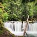 Trail to Mount Baldy, Washington