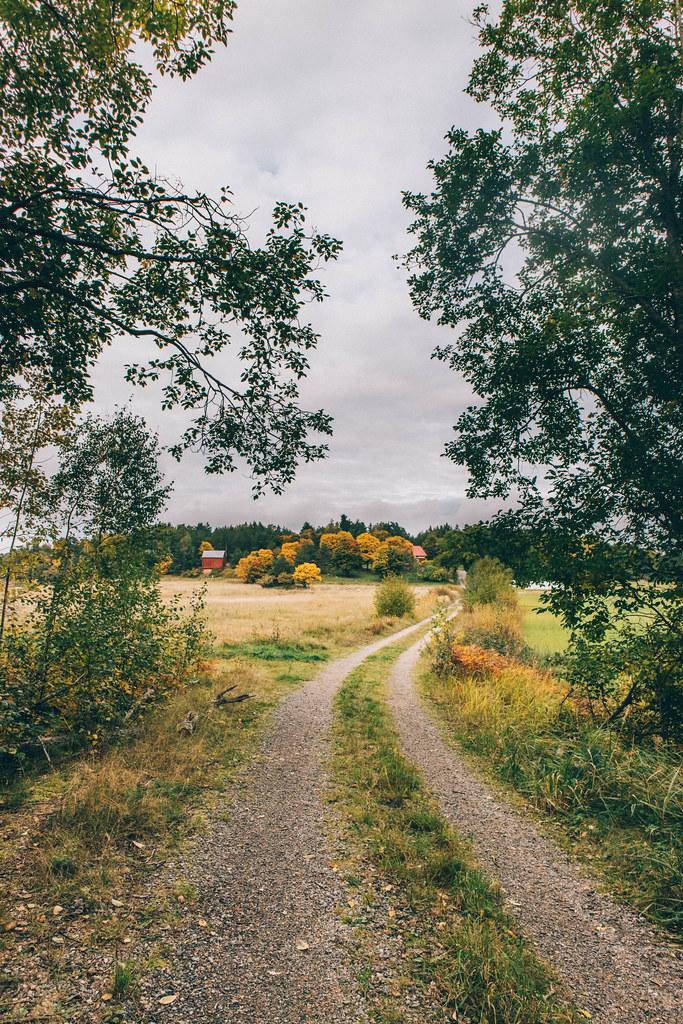 © Kathrin Deter | St. Olavs Trail