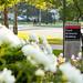 2020 - June - FSHN - Food Sciences Building Peonies-0039.jpg