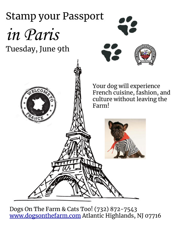 paris flyer (1)
