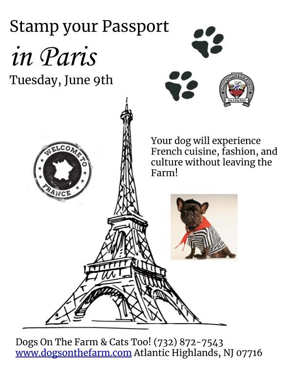 paris flyer (1)