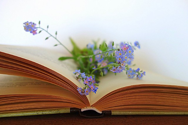 my favorite book and flowers