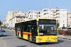 Maren Buss, AA 691TP