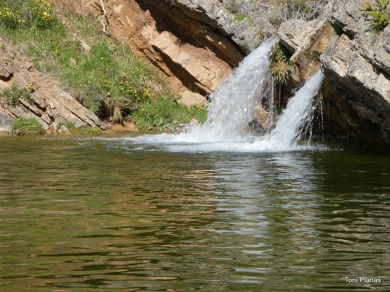 Alta vall de la Riera de Merlès