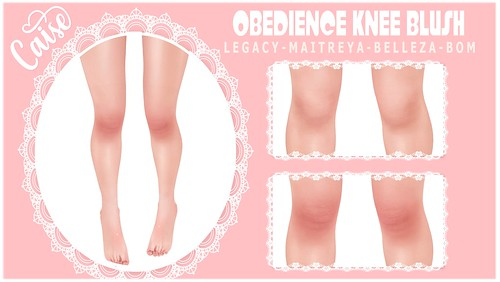 CAISE - OBEDIENCE KNEE BLUSH GIFT
