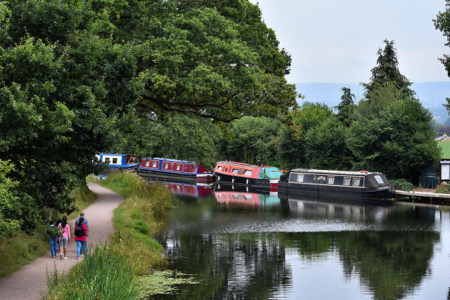 Tiverton Canal, August 2019