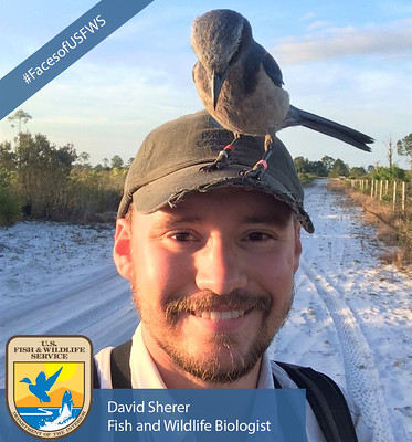 Faces of the U.S. Fish and Wildlife Service – David Sherer