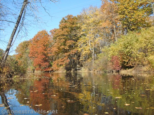 Autumn reflections in Black Creek, Rochester, New York