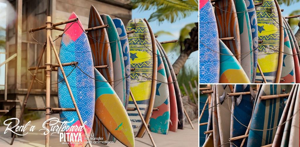 Pitaya – Rent a surfboard