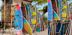 Pitaya - Rent a surfboard