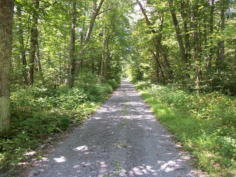 Rapidan Road