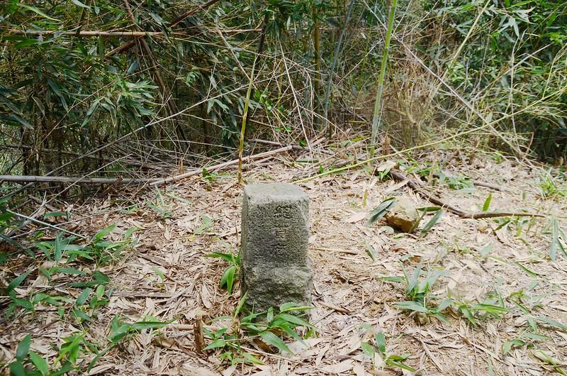 頭寮坑山總督府圖根補點(Elev. 210 m) (2)