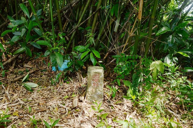 茄苳富士山冠字野(39)土地調查局圖根點(Elev. 279 m)